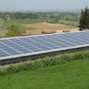 110 kW agricolo a Forlì